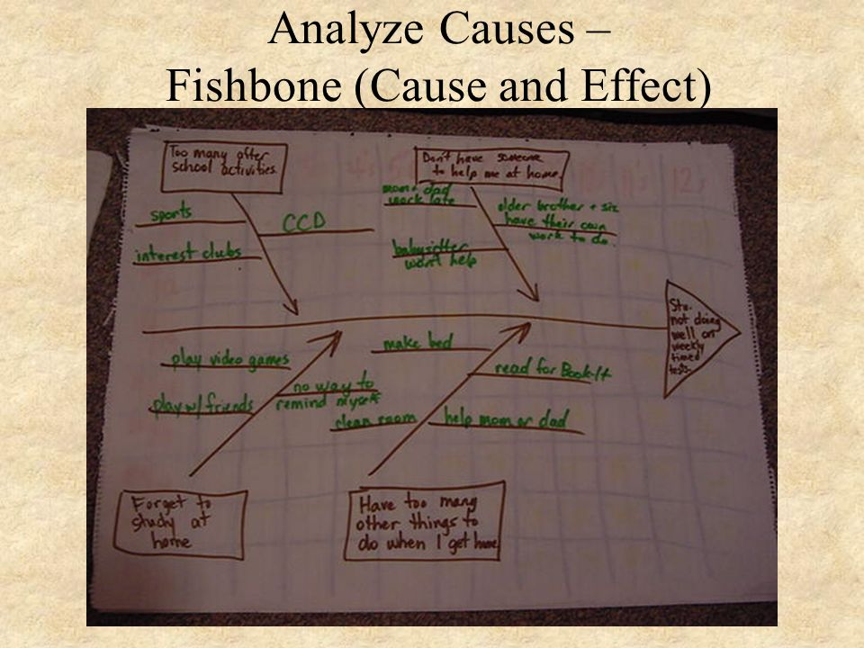 Analyze Causes – Fishbone (Cause and Effect)