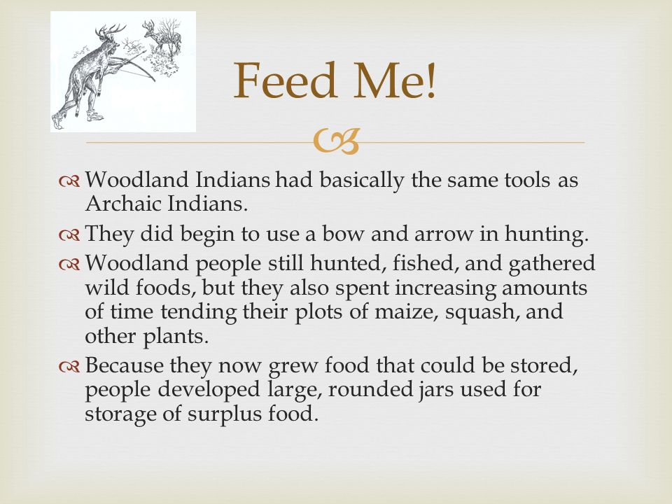 Feed Me! Woodland Indians had basically the same tools as Archaic Indians. They did begin to use a bow and arrow in hunting.