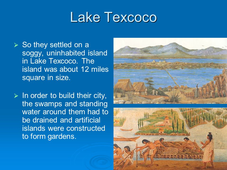 Lake TexcocoSo they settled on a soggy, uninhabited island in Lake Texcoco. The island was about 12 miles square in size.