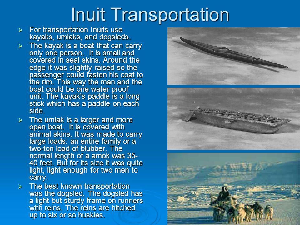Inuit Transportation For transportation Inuits use kayaks, umiaks, and dogsleds.