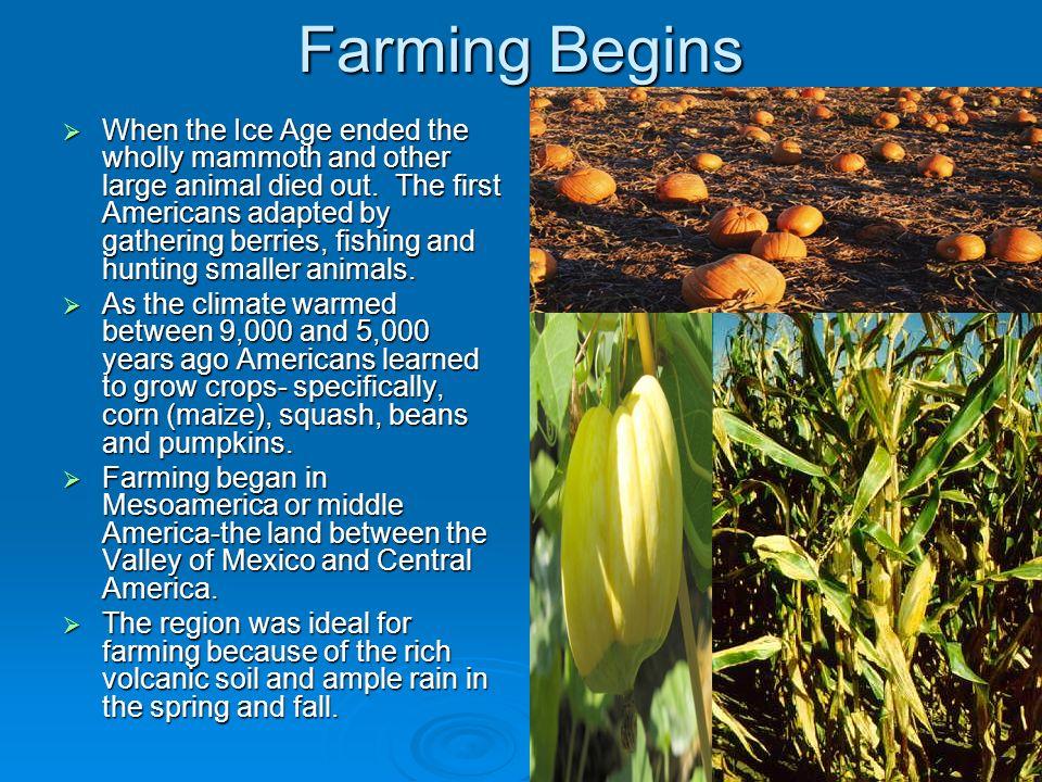 Farming Begins