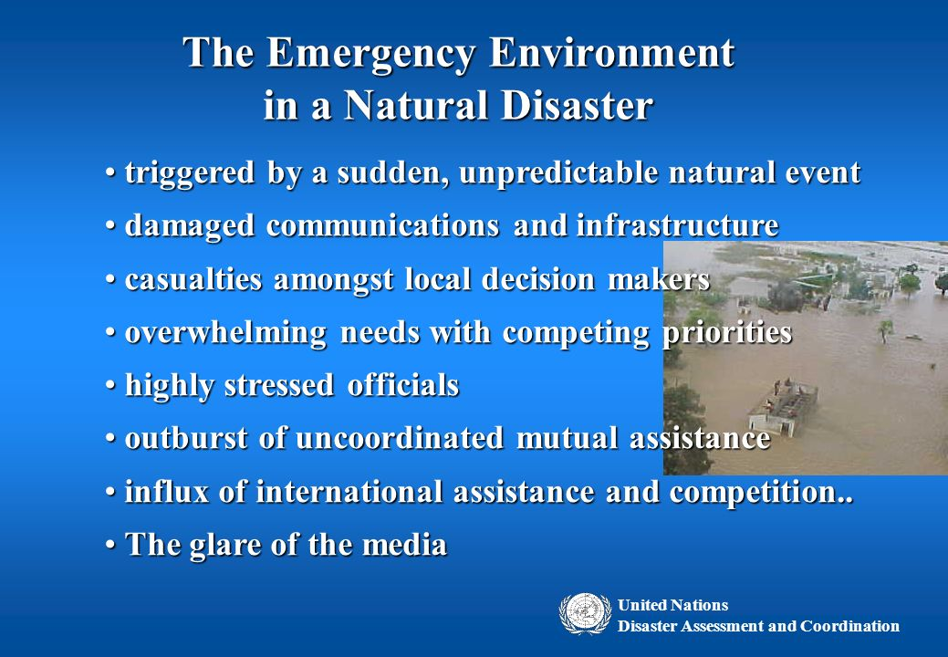 natural disaster and the decisions that Read this essay on natural disasters & the decisions that follow come browse our large digital warehouse of free sample essays get the knowledge you need in order to pass your classes and.