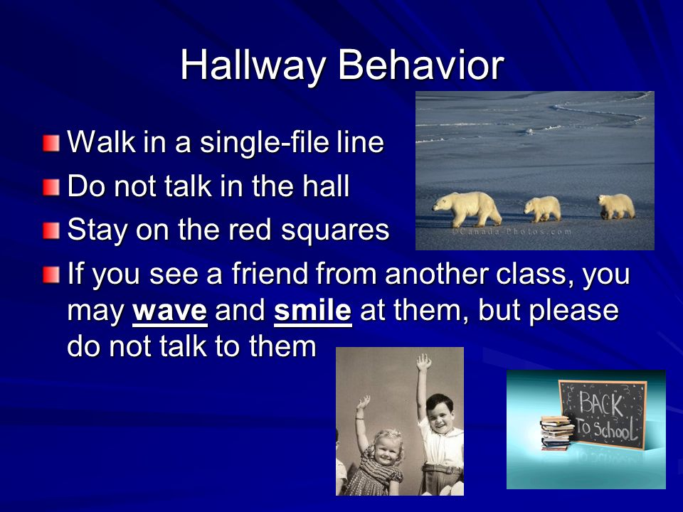 Hallway Behavior Walk in a single-file line Do not talk in the hall