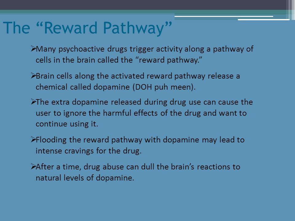 The Reward Pathway Many psychoactive drugs trigger activity along a pathway of cells in the brain called the reward pathway.