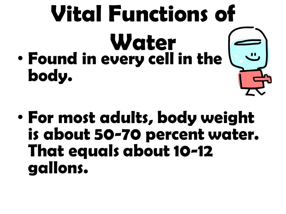 Vital Functions of Water