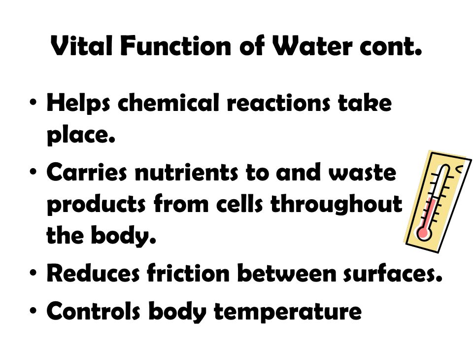 Vital Function of Water cont.