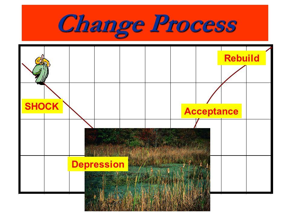 Change Process Rebuild SHOCK Acceptance Depression