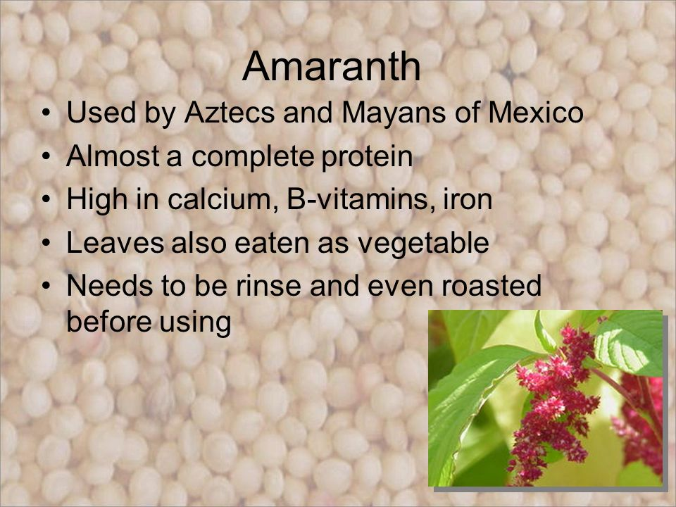 Amaranth+Used+by+Aztecs+and+Mayans+of+Me