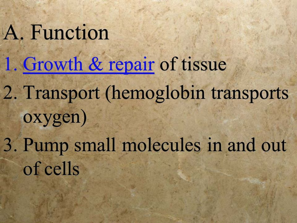 A. Function Growth & repair of tissue