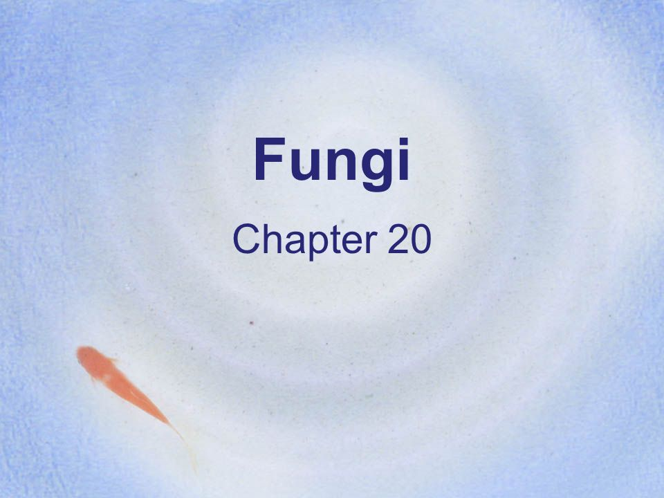 Fungi Chapter 20