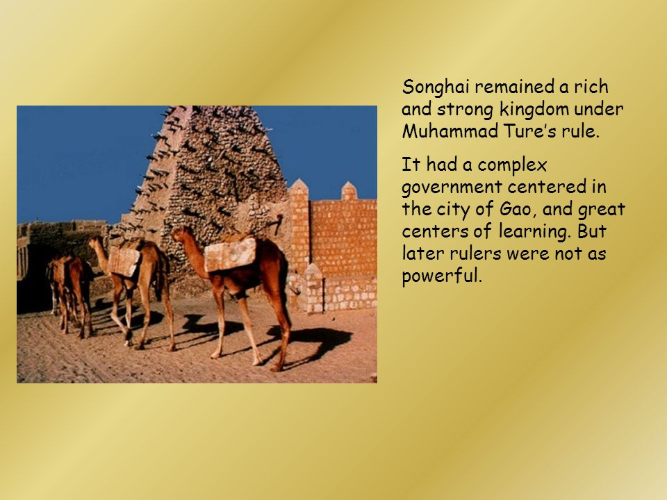 Songhai remained a rich and strong kingdom under Muhammad Ture's rule.