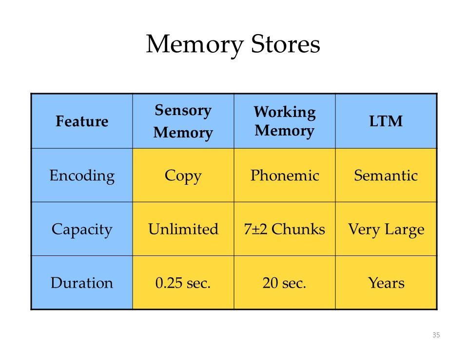 Memory Stores Feature Sensory Memory Working Memory LTM Encoding Copy