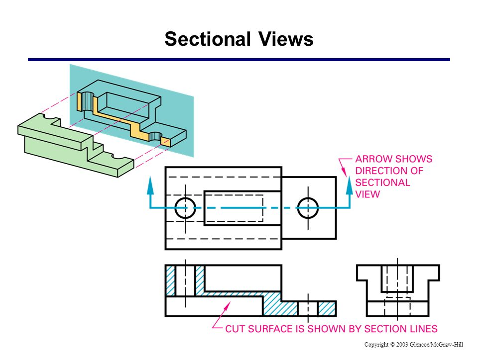 Sectional Views Copyright © 2003 Glencoe/McGraw-Hill