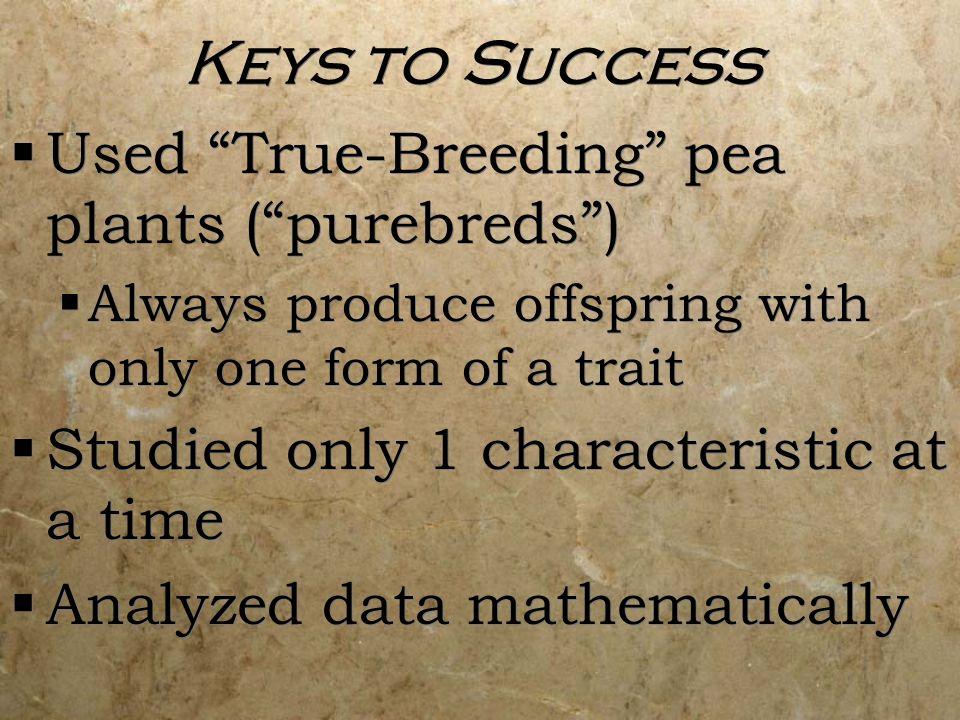 Keys to Success Used True-Breeding pea plants ( purebreds )