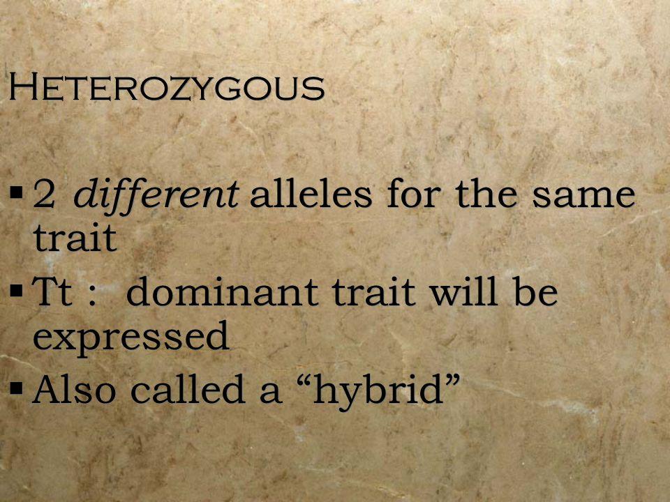 Heterozygous 2 different alleles for the same trait.