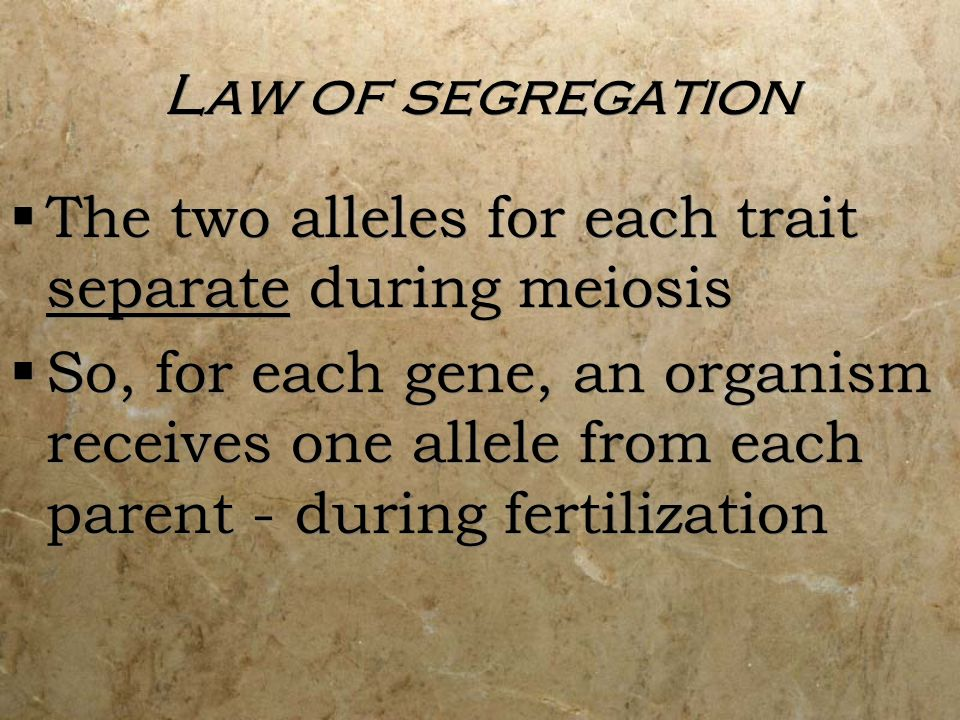Law of segregation The two alleles for each trait separate during meiosis.