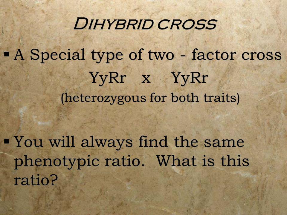 Dihybrid cross A Special type of two - factor cross YyRr x YyRr