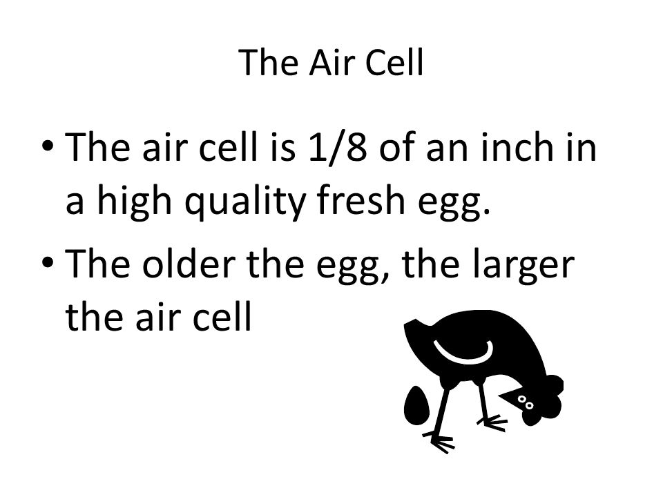 The air cell is 1/8 of an inch in a high quality fresh egg.