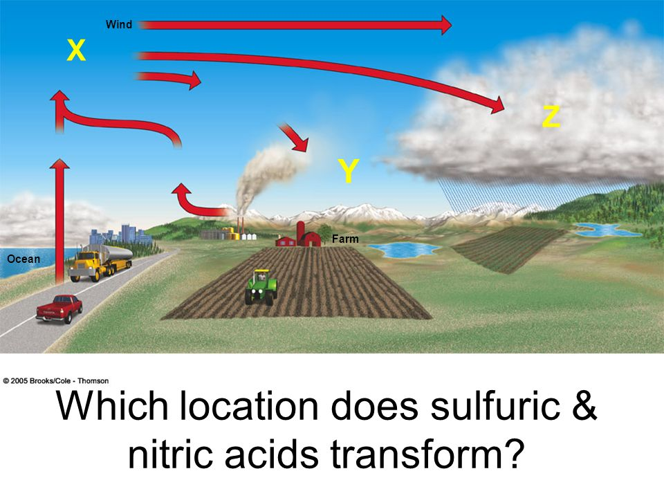 Which location does sulfuric & nitric acids transform
