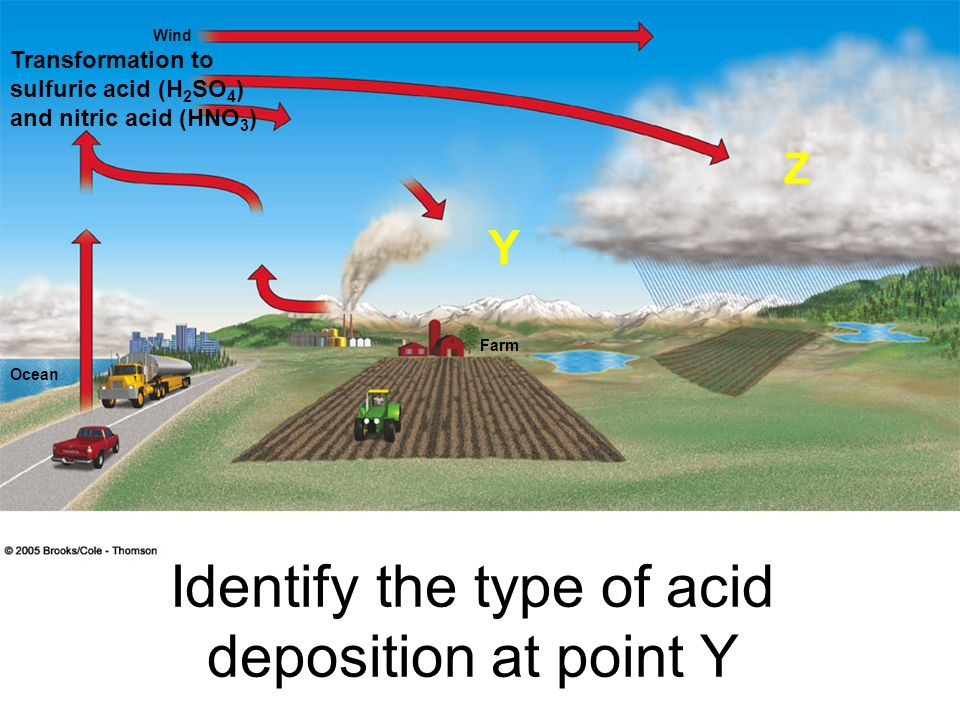 Identify the type of acid deposition at point Y