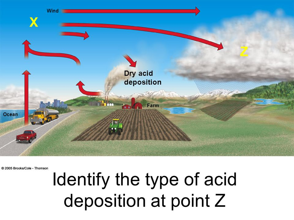 Identify the type of acid deposition at point Z
