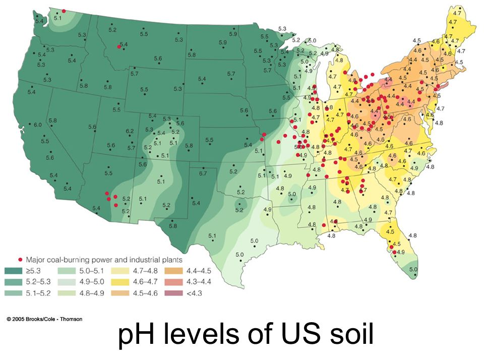 pH levels of US soil