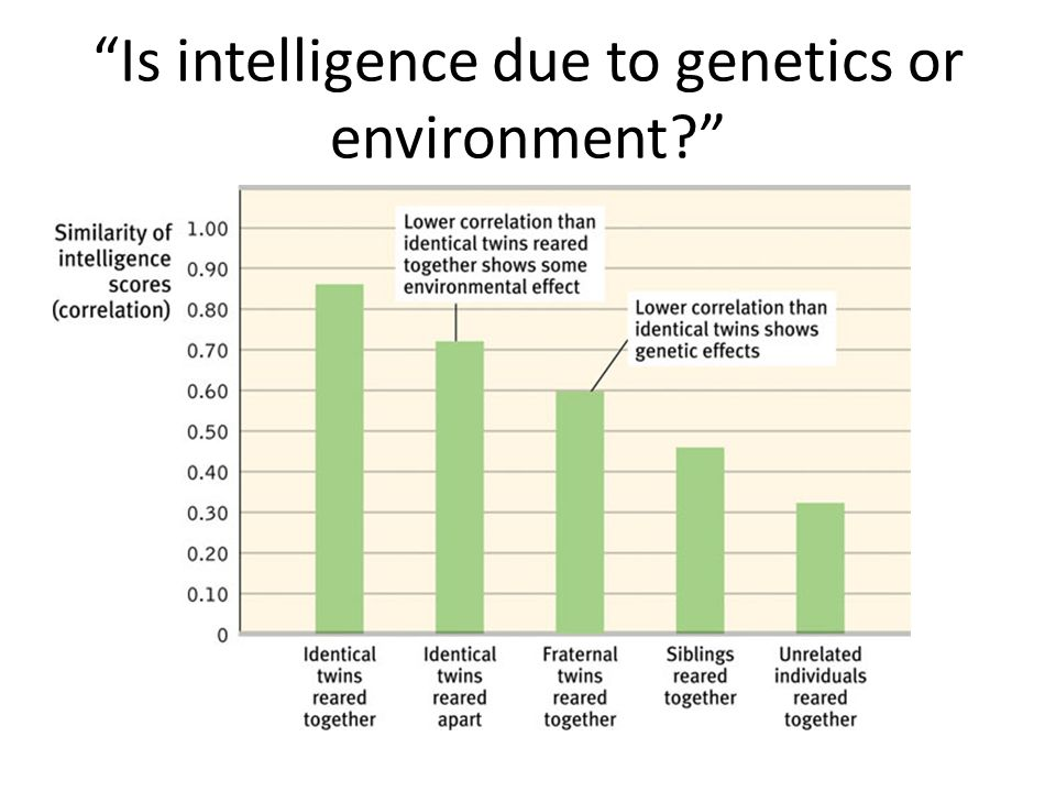Is intelligence due to genetics or environment