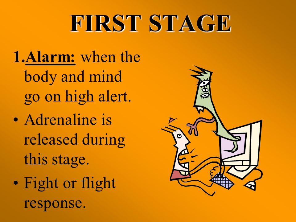 FIRST STAGE 1.Alarm: when the body and mind go on high alert.