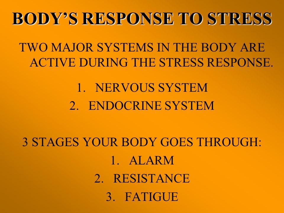 BODY'S RESPONSE TO STRESS
