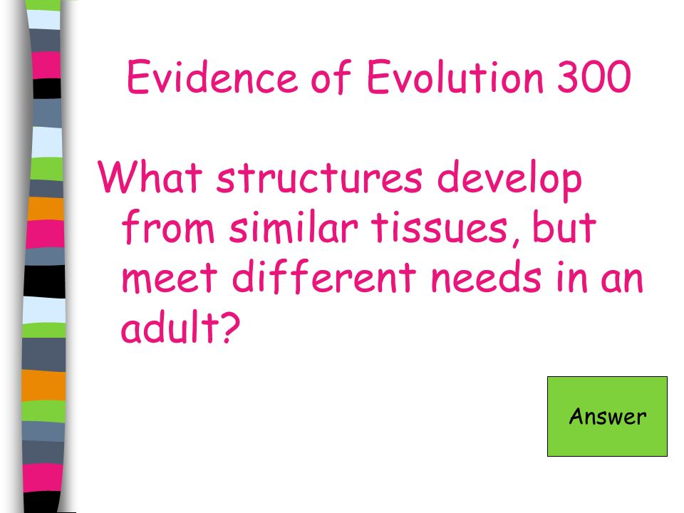 Evidence of Evolution 300 What structures develop from similar tissues, but meet different needs in an adult