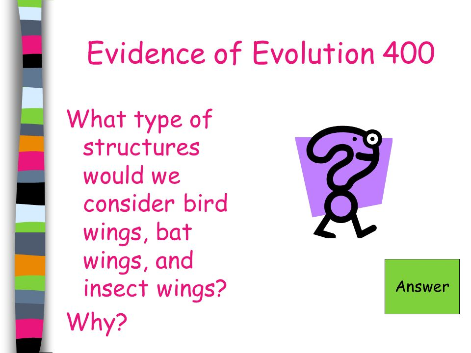 Evidence of Evolution 400 What type of structures would we consider bird wings, bat wings, and insect wings Why