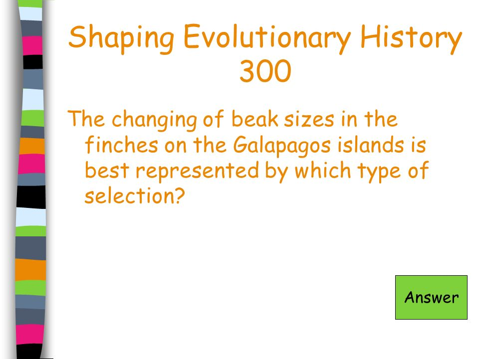Shaping Evolutionary History 300