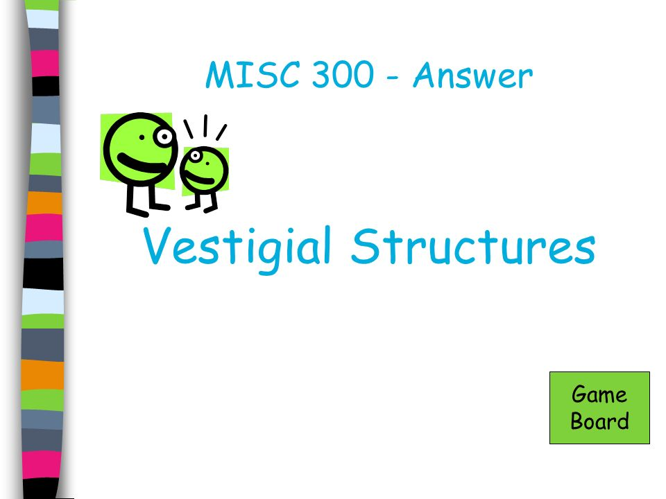 MISC Answer Vestigial Structures Game Board