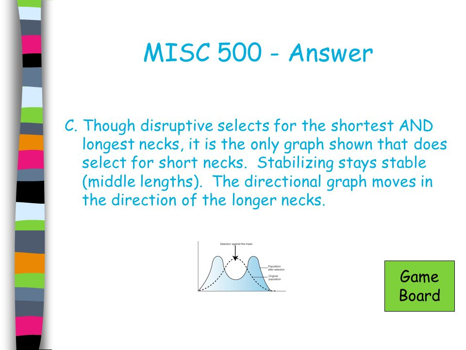 MISC 500 - Answer
