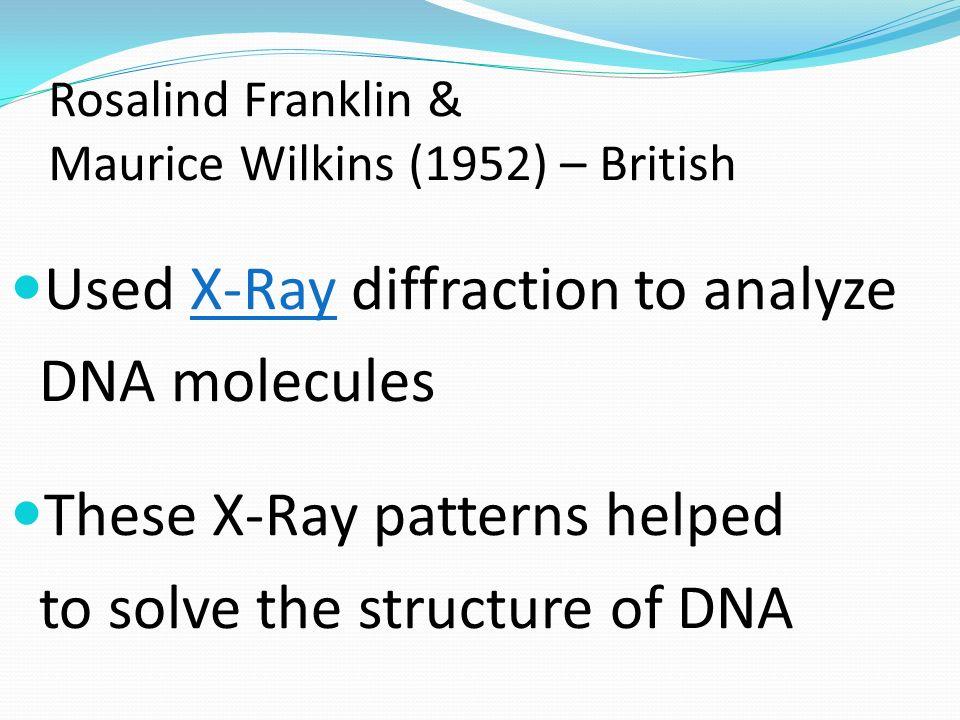 Rosalind Franklin & Maurice Wilkins (1952) – British