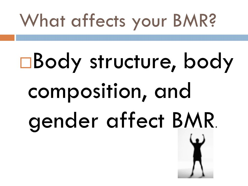 Body structure, body composition, and gender affect BMR.
