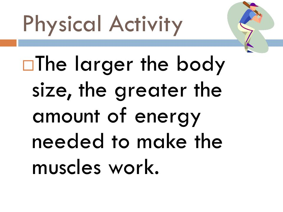 Physical Activity The larger the body size, the greater the amount of energy needed to make the muscles work.