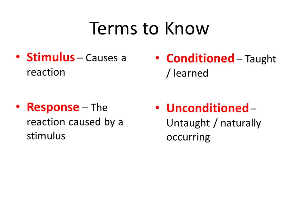 Terms to Know Stimulus – Causes a reaction