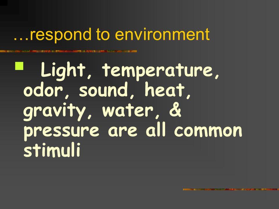 …respond to environment