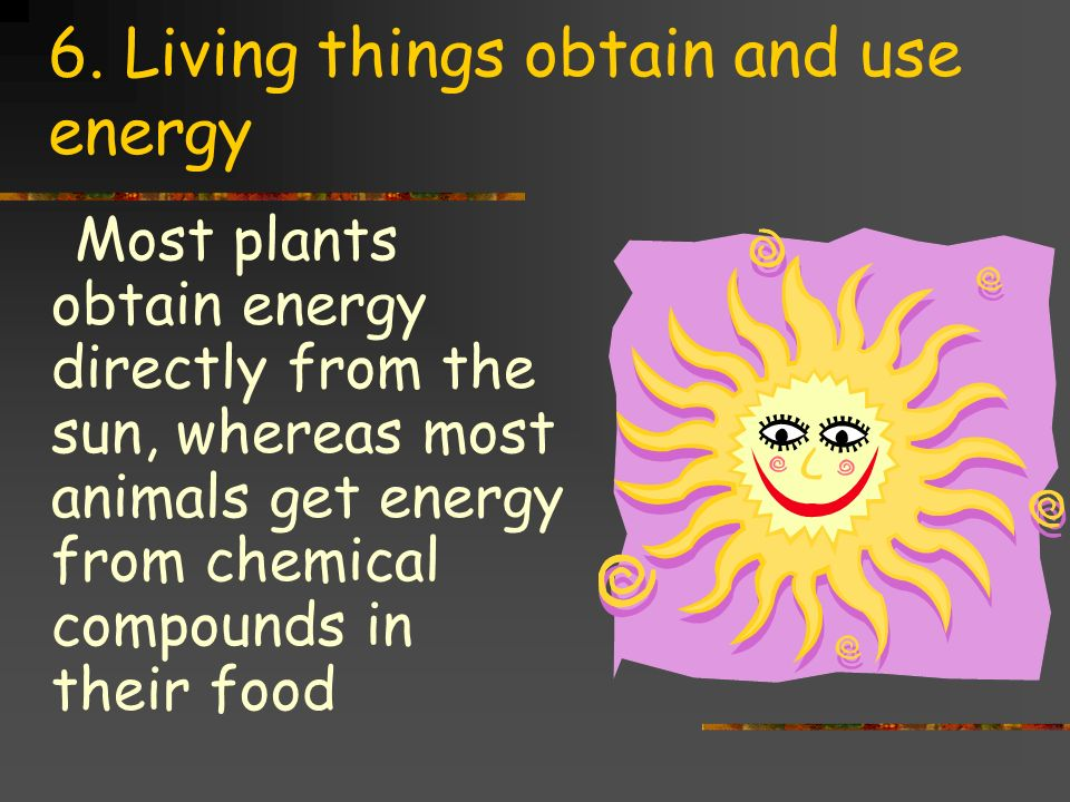 6. Living things obtain and use energy