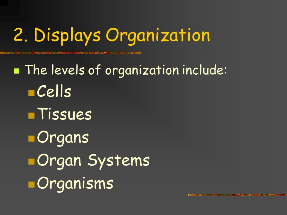 2. Displays Organization