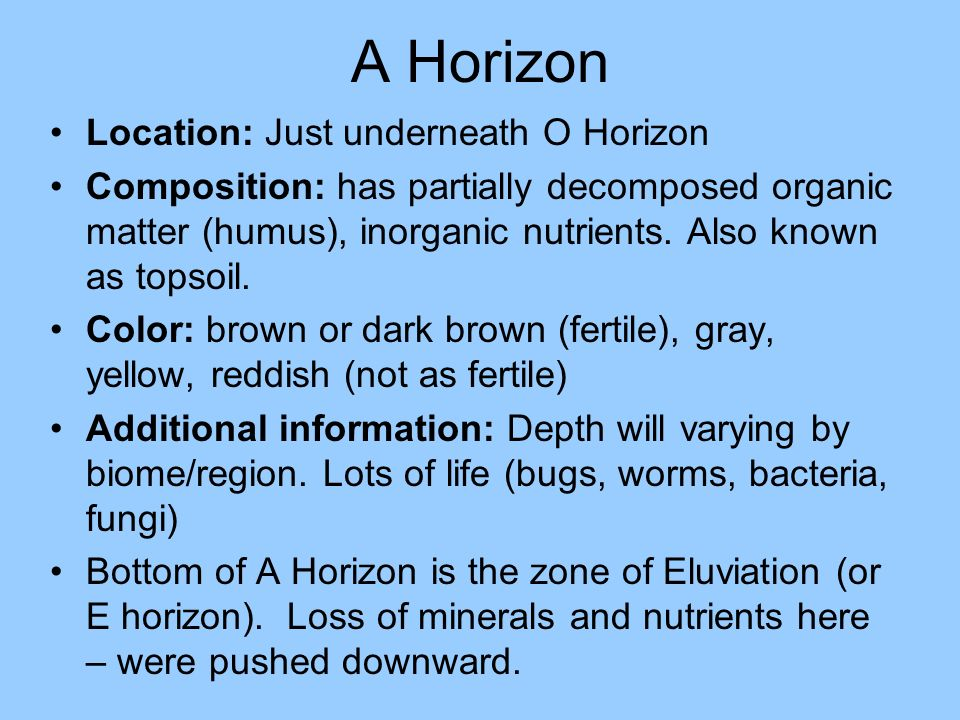 A Horizon Location: Just underneath O Horizon