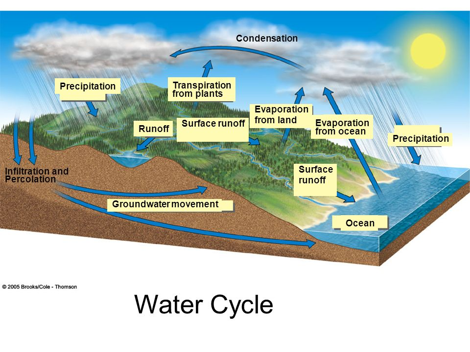 Figure 4-28 Page 76 Water Cycle Condensation Precipitation