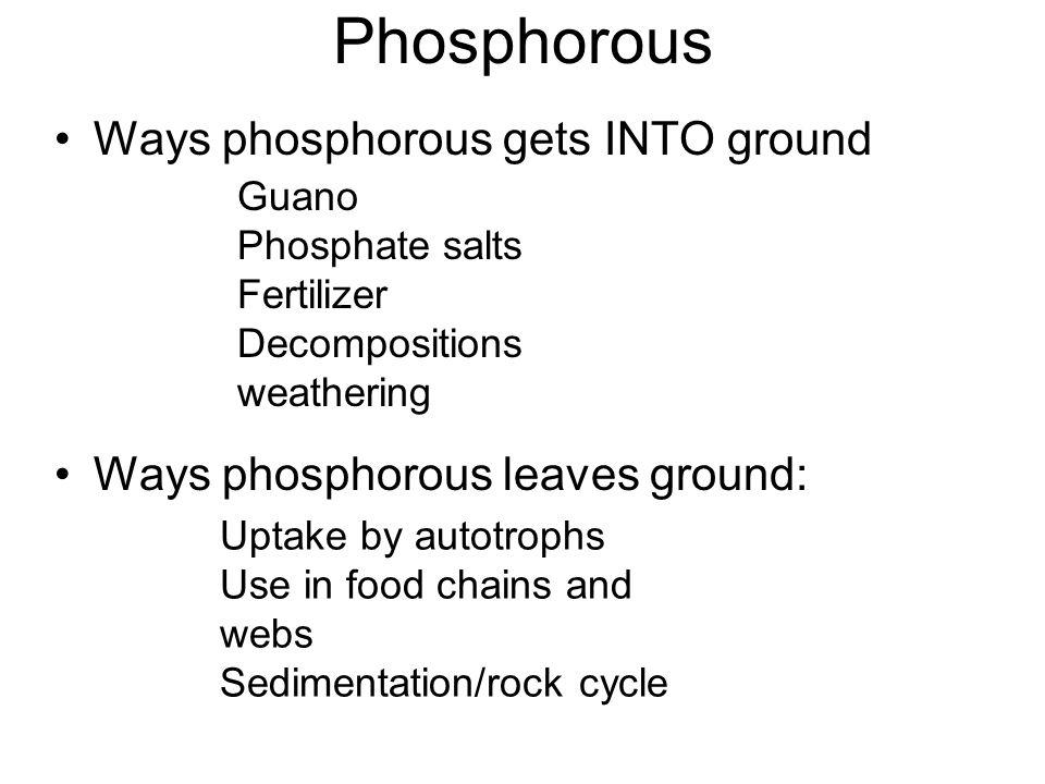 Phosphorous Ways phosphorous gets INTO ground
