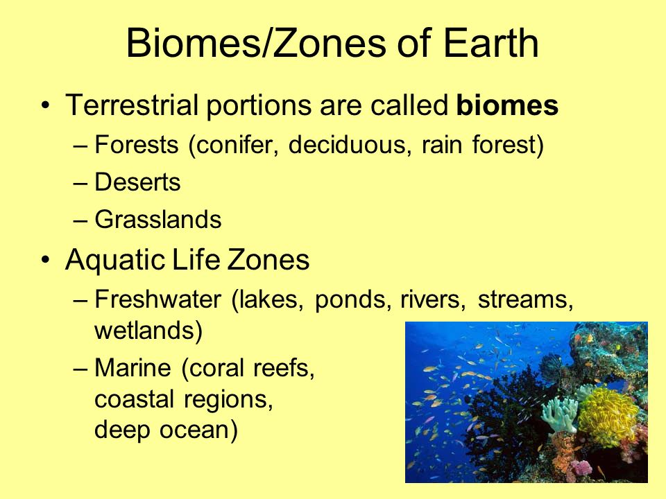 Biomes/Zones of Earth Terrestrial portions are called biomes