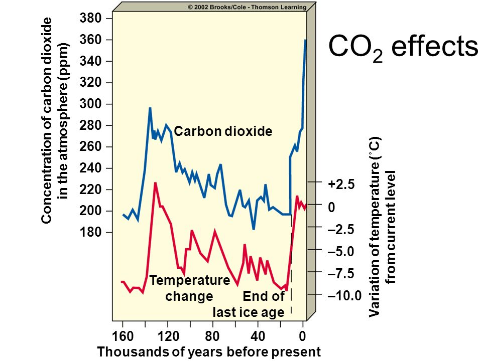 CO2 effects 380 360 340 320 300 Concentration of carbon dioxide