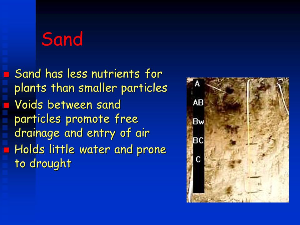 Sand Sand has less nutrients for plants than smaller particles