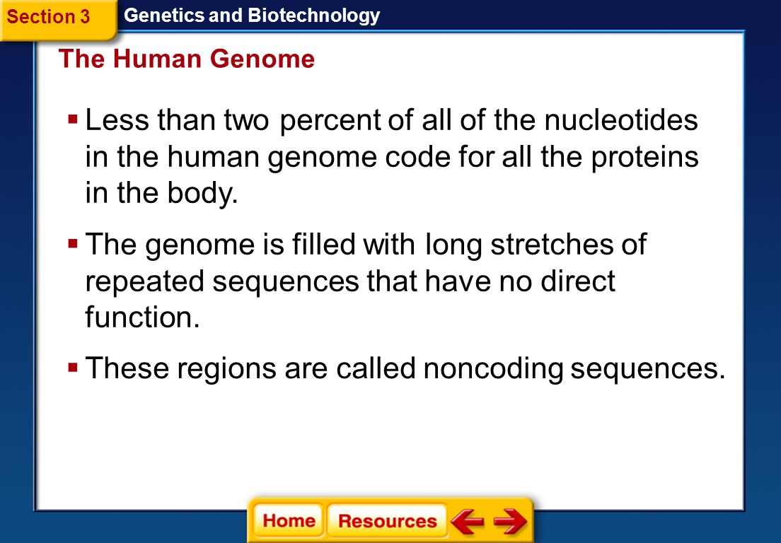 These regions are called noncoding sequences.