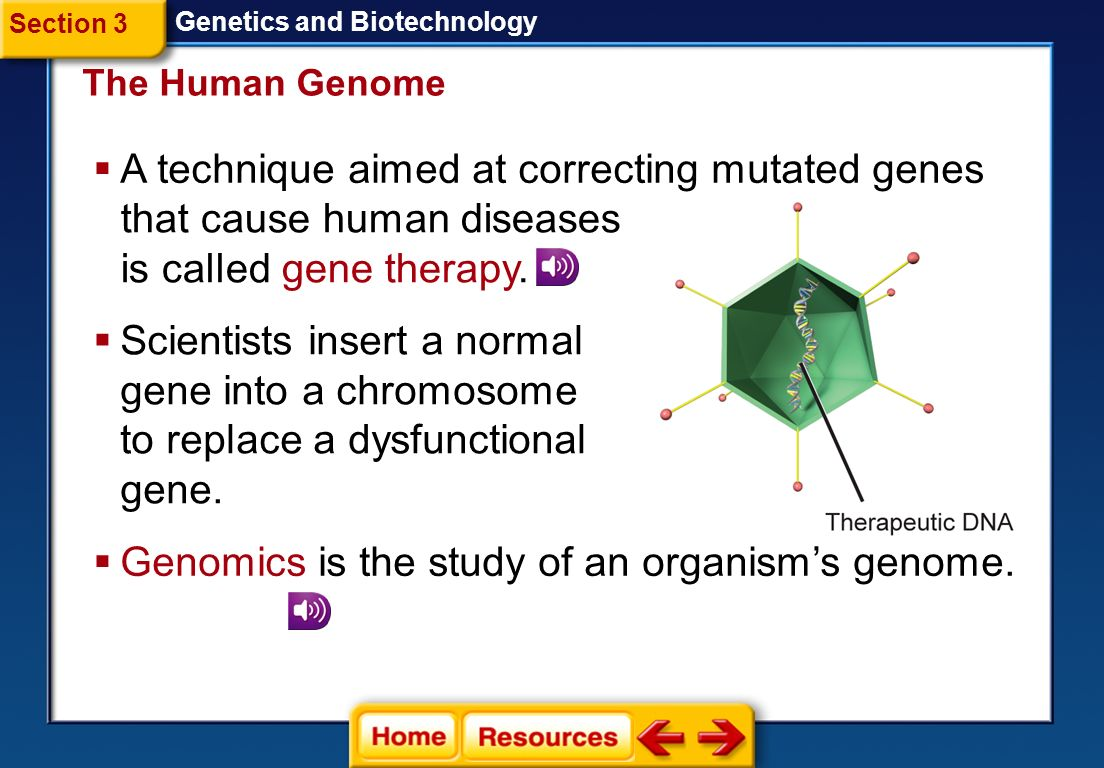 A technique aimed at correcting mutated genes