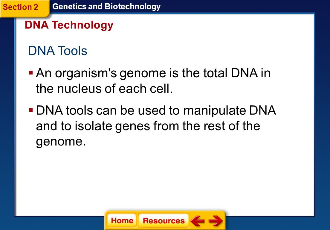 An organism s genome is the total DNA in the nucleus of each cell.